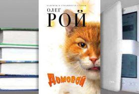 Книга Олега Роя: Домовой